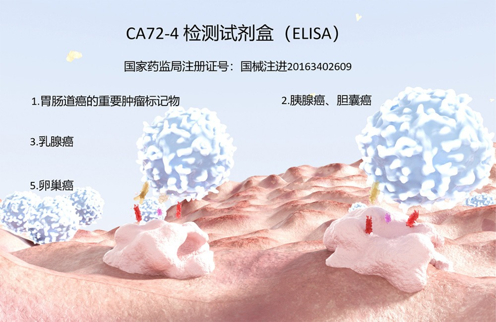 CA72-4检测试剂盒