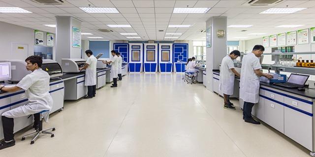 科学家在实验室工作
