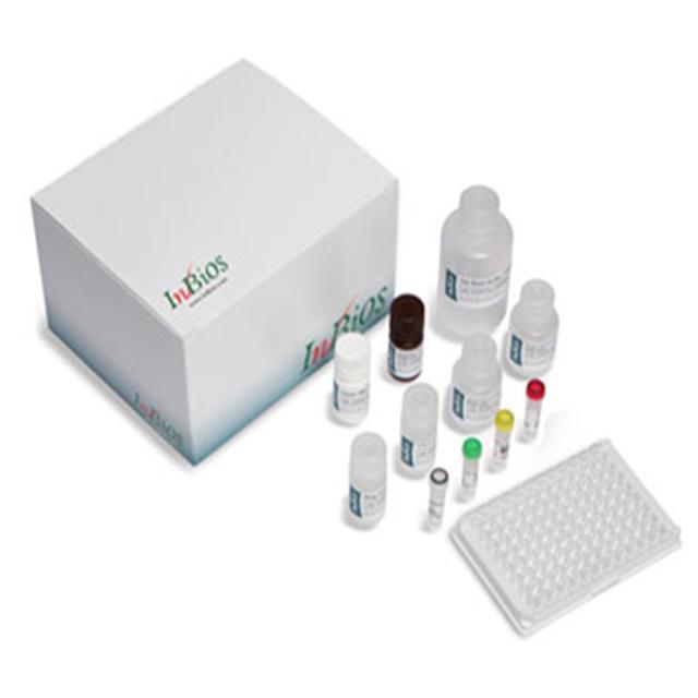 登革热IgG检测试剂盒