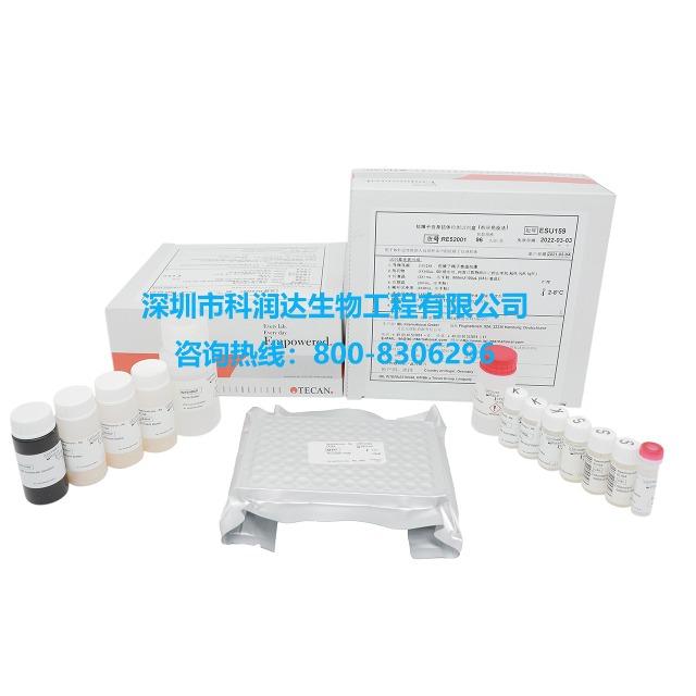 抗精子自身抗体检测试剂盒(ELISA)