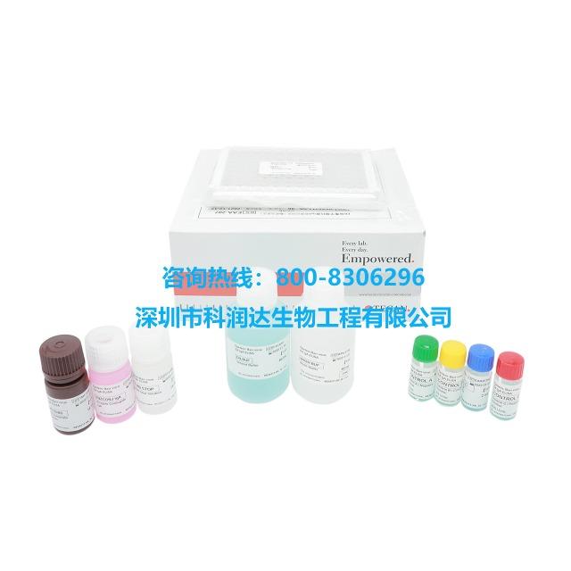 EB病毒EA-IgA检测试剂盒