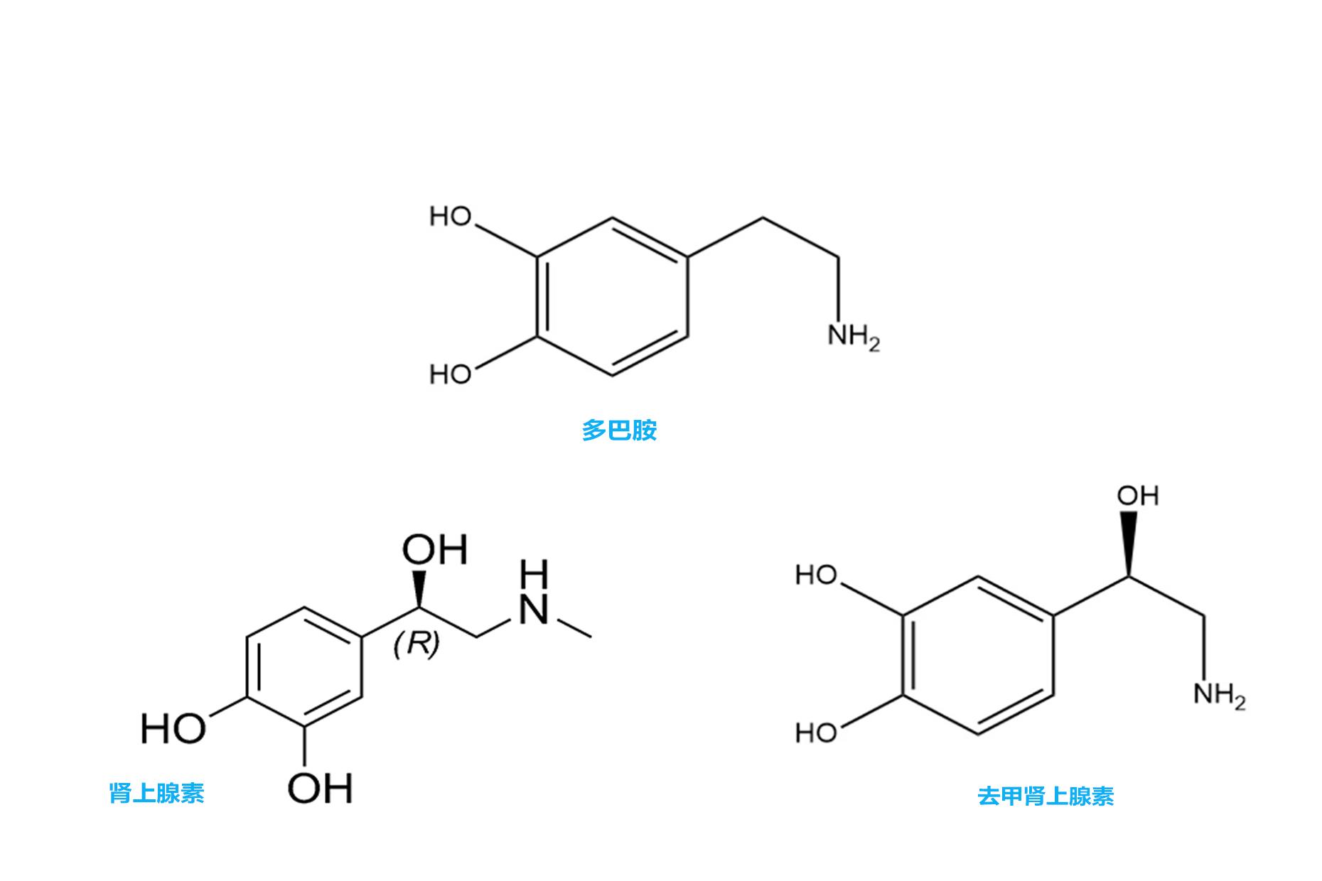 多巴胺,肾上腺素,去甲肾上腺素
