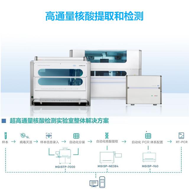 高通量核酸提取和检测