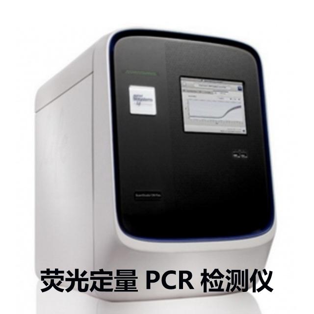荧光定量PCR检测