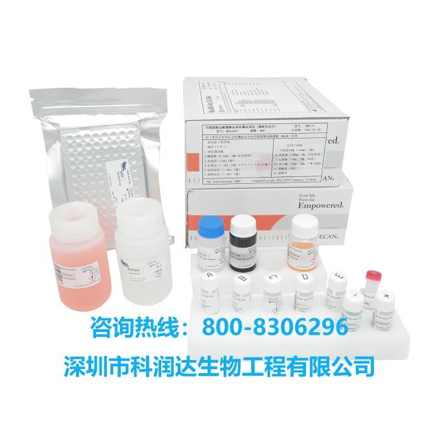 麻疹病毒试剂盒