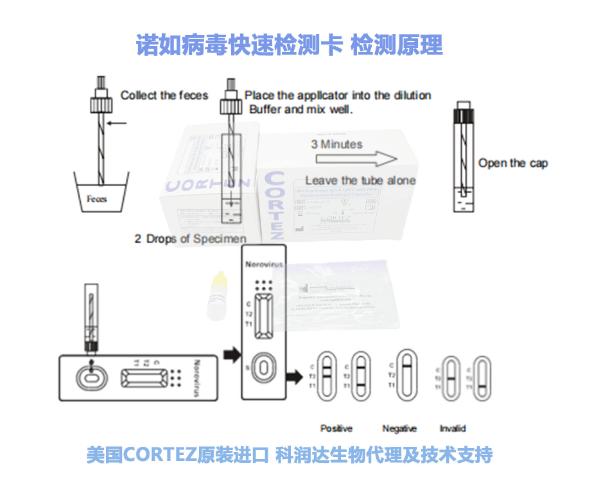 检测试剂盒及原理